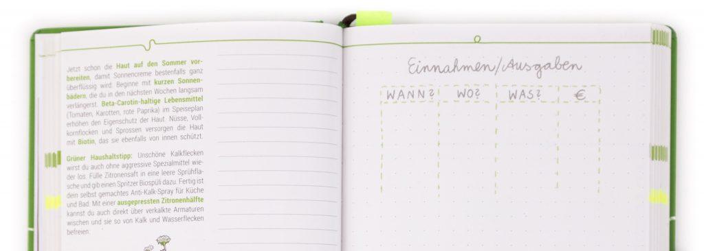 Haushaltsbuch - Mustertabelle